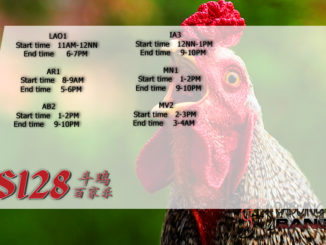 Jadwal Sabung Ayam S128 05 Maret 2020