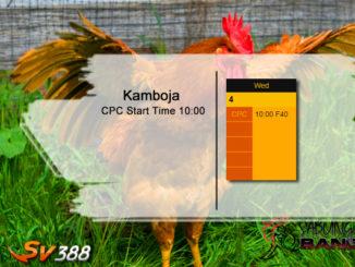 Jadwal Sabung Ayam SV388 04 Maret 2020
