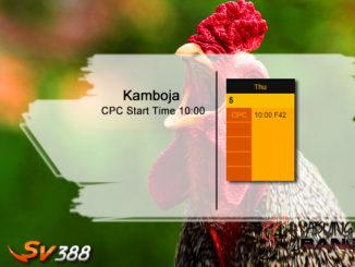 Jadwal Sabung Ayam SV388 05 Maret 2020